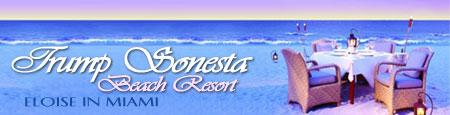 Trump Sonesta Beach Resort and Spa Miami Review By ...