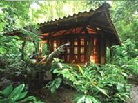 Playa Nicuesa Lodge - Cabin