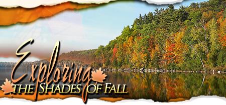 Exploring the Shades of Fall